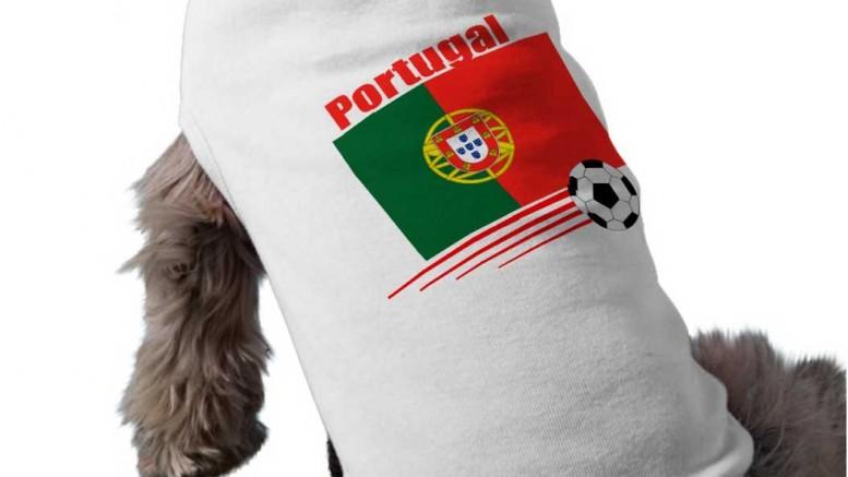 chien avec tshirt